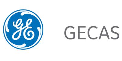 GE Capital Aviation Services (GECAS)